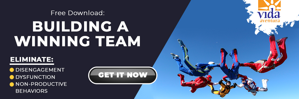 banner with skydivers image and words that say BUILD A WINNING TEAM